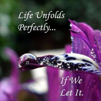 LET THE LIFE UNFOLD ITSELF